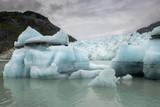 Icebergs and Terminus of Marjerie Glacier, Alaska