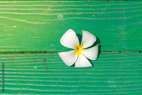Plexiglas Plumeria Plumeria on the wooden floors, natural green background.