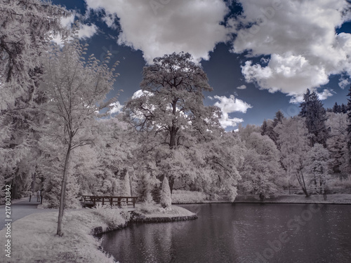 Fotobehang Grijs infrared photography - ir photo of landscape with tree under sky with clouds - the art of our world and plants in the infrared camera spectrum