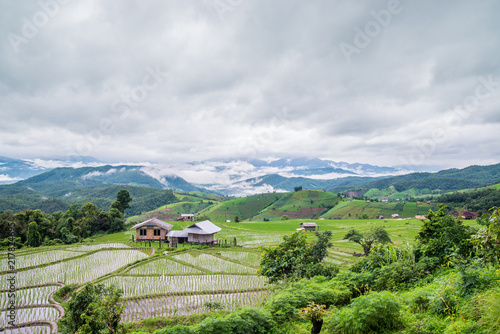 Foto Spatwand Thailand View Terraced Paddy Field in Mae-Jam Village, Chaingmai, Thailand