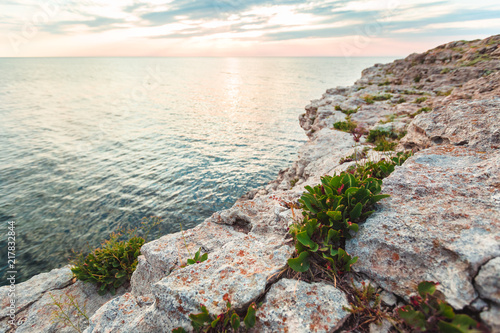 Foto Murales Clear sky over a blue sea by the beach  Cliffs background
