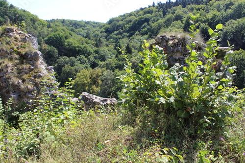 Plexiglas Khaki Krajobraz, Ojcowski park narodowy