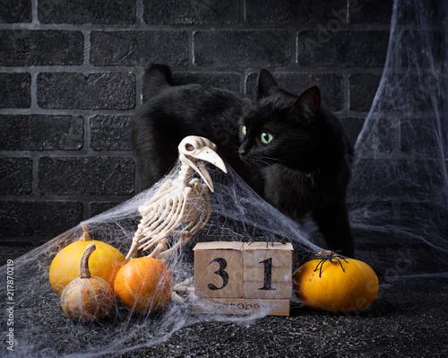 Foto Spatwand Kat Halloween background with wooden calendar