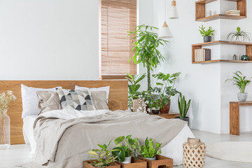 Wooden bed with cushions and sheets in bright bedroom interior with plants and blinds. Real photo