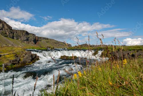 Flusslandschaft mit kleinen Wasserstufen in Island, im Vordergrund Gras und Blumen