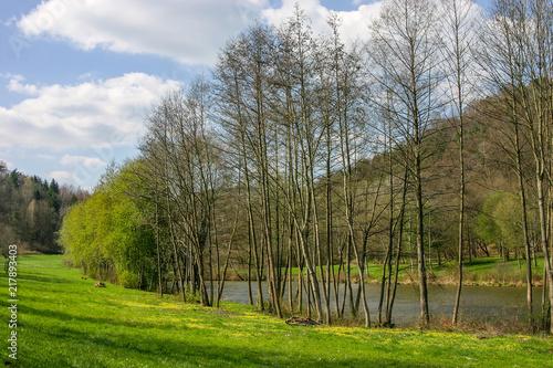Leinwanddruck Bild Frühling am Silzer See