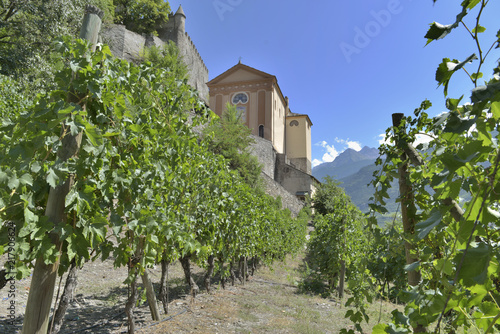 In de dag Wijngaard vineyard next to an italalian church in aosta valley