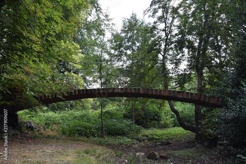 Fotobehang Weg in bos Park w Mettlach