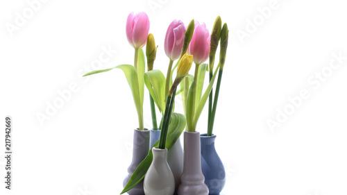 Kleine Vasen mit Tulpen und Narzissen isoliert
