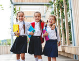 Happy children  girlfriend schoolgirl student elementary school. - 217958656