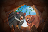Two bears in a cave - 217972630