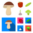 Red sweet pepper, green cucumber, garlic, cabbage. Vegetables set collection icons in cartoon,flat style vector symbol stock illustration web.