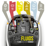 Technical fluids of the car