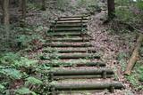 日本の山の中の丸太階段