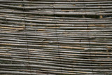 dry bamboo texture