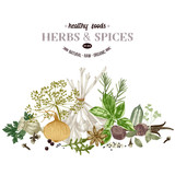 Hand drawn border with herbs and spices. - 218050691