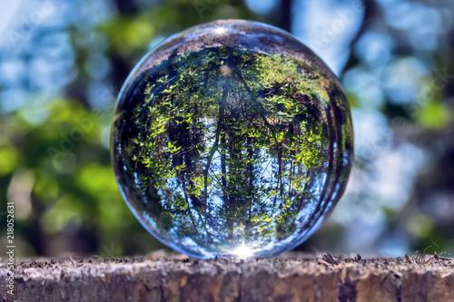 Fototapeta A glass ball of nature