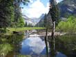 Quadro Yosemite National Park, Postcard