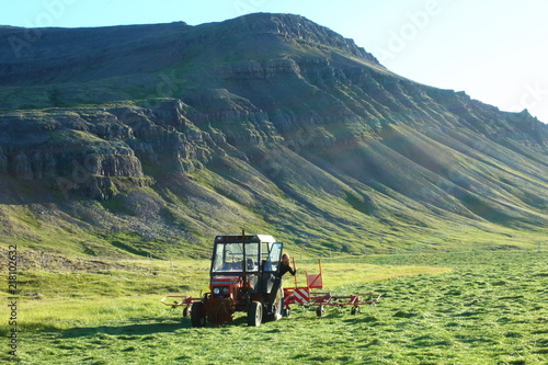 Fotobehang Trekker Tractor in the field at the hey season