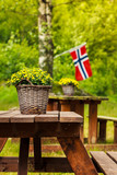 norwegian flag and green picnic site