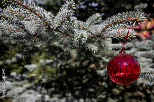 Foto Murales Red christmas ornaments, red ball, on the xmas tree on nature background and blurred branch . Merry christmas card. Winter holiday theme. Happy New Year.