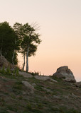 A rocky hillside with an aspen tree against the orange glow of a predawn sky - 218132830
