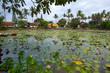 Quadro Lotus lake Ujung,Bali island,Indonesia