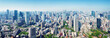 panoramic view to the Tokyo, Japan from air. Cityscape with many modern business buildings