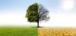 Leinwandbild Motiv Klimawandel