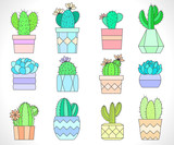 Vector set of cacti and succulents in flower pots. Flat style. Colored collection.