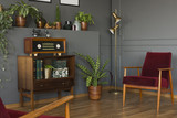 Radio on wooden cabinet next to plant and red armchair in grey vintage living room interior. Real photo