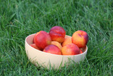 Peaches in bowl on green grass - 218227607