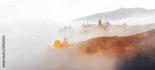 Amazing scene on autumn mountains. Yellow and orange trees in fantastic morning sunlight. Carpathians, Europe. Landscape photography - 218230231