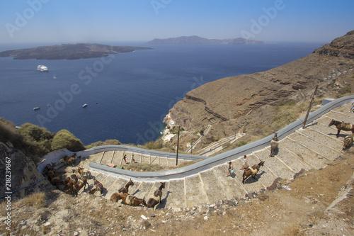 Fototapeta Il percorso dei muli di Fira a Santorini
