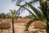 Desert of figuig - 218243472