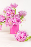 Beautiful Bunch of Peony Style Tulips in the Pink Pot