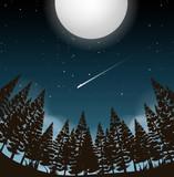 full moon over woods