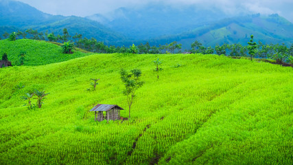 Mountain cottage in Nan province, Thailand.