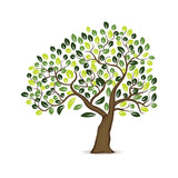 Illustration Tree Design In white background
