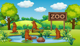 Otter at the zoo - 218315875