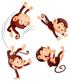 A set of monkey on white background - 218317209