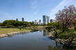 Park in Tokyo with skyscrapers in distance