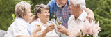 Panorama of happy elderly people making toast during garden party - 218347843