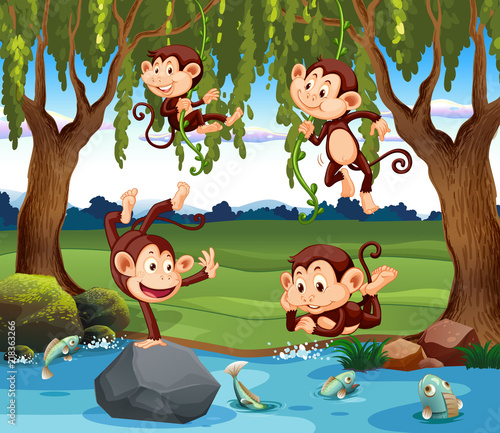 Canvas Kids A group of monkey in nature
