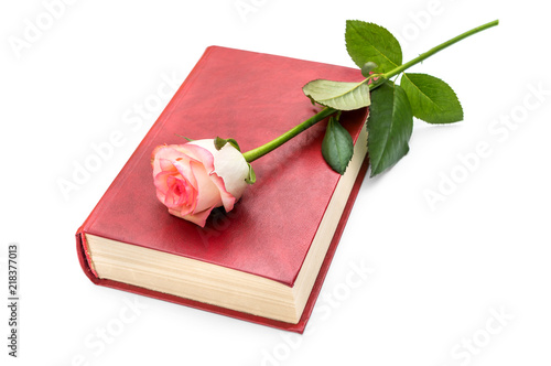 Rose on red book. Isolated on white.