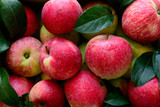 Fresh red apples in the wooden box on black background.  Top view. - 218379843