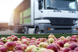 Fruit and food distribution. Truck loaded with containers full of apples ready to be shipped to the market. - 218419627