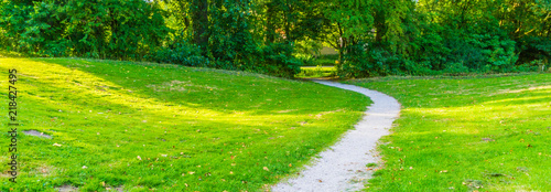 curved park road in a countryside park landscape - 218427495