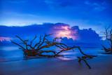 Lightning Storm at Driftwood Beach in Jekyll Island, Georgia, USA - 218440813