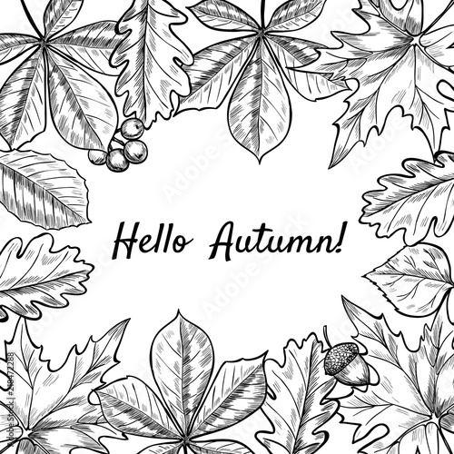 Vector Frame With Leaves Berries Acorns Hand Drawn Vintage Style
